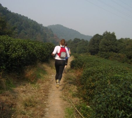 Running through Tea Fields in China