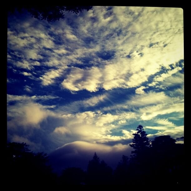 Golden Gate Park Clouds